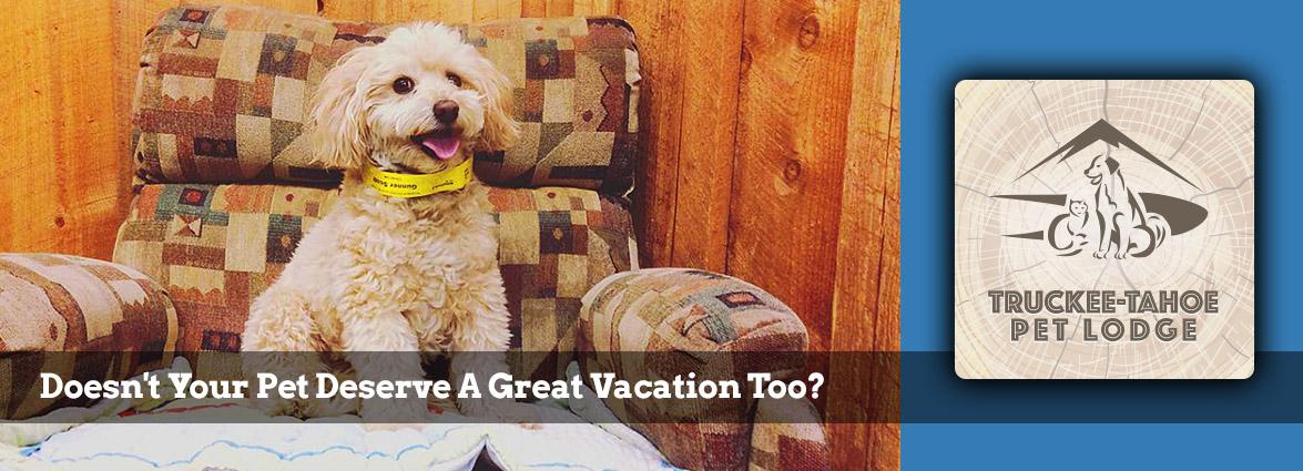 Truckee-Tahoe Pet Lodge