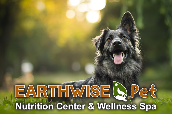 EarthWise Pet, South Lake Tahoe