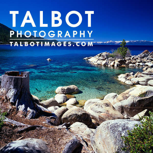 Talbot Photography
