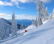 Dp Ski & Stay - Hyatt Regency Lake Tahoe