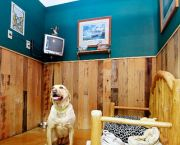 All-suite Dog Resort - Truckee-Tahoe Pet Lodge
