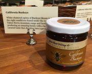 California Buckeye Honey - 9oz - Tahoe Oil & Spice