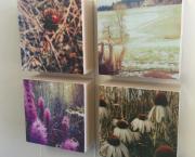 Paint & Photo Mixed Media Blocks by Julia Skerry - Wildwood Makers Market