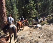 Breakfast & Horseback Trail Ride - Zephyr Cove Stables