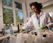 Laboratory in the Tahoe Center for Environmental Sciences - UC Davis Tahoe Environmental Research Center