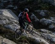 Bike Rentals & Demos - Tahoe Sports Hub