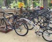 Tandem Bike Rentals - Anderson's Bicycle Rental