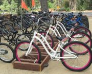 Children's Bike Rentals - Anderson's Bicycle Rental