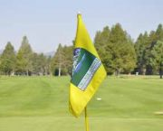 Men's Club - Ponderosa Golf Course