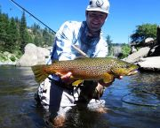 Guided Fly-Fishing Tours - Matt Heron Fly Fishing