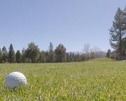 Adult Golf Clinics - Ponderosa Golf Course