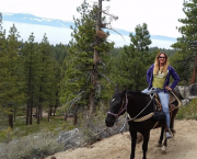 Lunch & Horseback Trail Ride - Zephyr Cove Stables