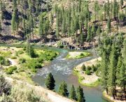 East Fork Carson River: Hangman's Run (Class II Whitewater) - Tahoe Whitewater Tours