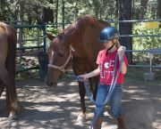 Equestrian Horsemanship Camps - Tahoe Donner Equestrian Center