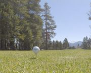 Private Golf Lessons - Ponderosa Golf Course
