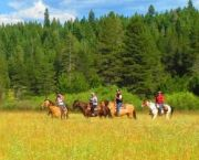 Scenic Trail Rides - Tahoe Donner Equestrian Center