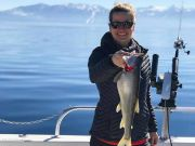 Tahoe Sport Fishing, March 7th Report