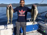 Tahoe Sport Fishing, Fishing Report - August 11
