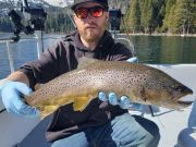 Tahoe Sport Fishing, Fishing Report - March 7