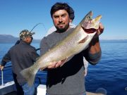 Tahoe Sport Fishing, Fishing Report - March 14