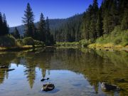 Mountain Hardware & Sports, Truckee River Fishing Report - July 21st