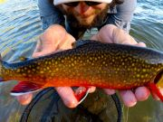 Trout Creek Outfitters, TCO Fishing report 8/10/20