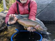 Trout Creek Outfitters, TCO Fishing Report 10/12/20