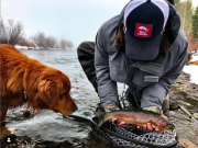 Mountain Hardware & Sports, Truckee River Fishing Report - Nov. 28th