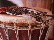 Cacao Ceremony W/ Yoga and Sound Healing