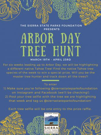 Sierra State Parks Foundation, 2021 Arbor Day Tree Hunt