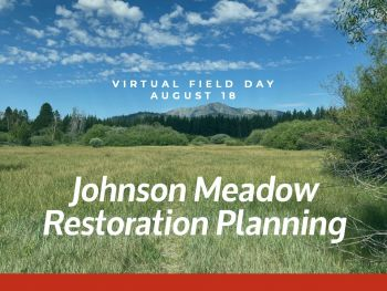 Lake Tahoe Events, Virtual Field Tour of Johnson Meadow Restoration Project