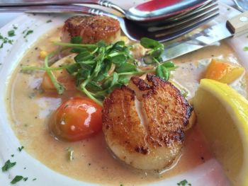 The Soule Domain, Sea Scallops