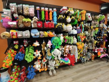 EarthWise Pet, South Lake Tahoe, Premium Dog Toys