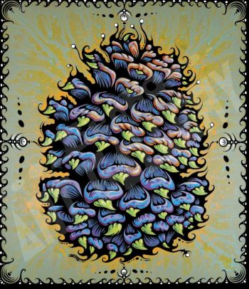 Benko Art Gallery, Ponderosa Pine Cone Canvas Print