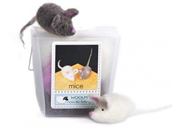 KidZone Museum, Award Winning Wool Pets