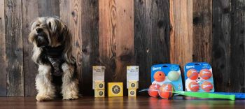 EarthWise Pet, South Lake Tahoe, Quality Dog Supplies & Accessories