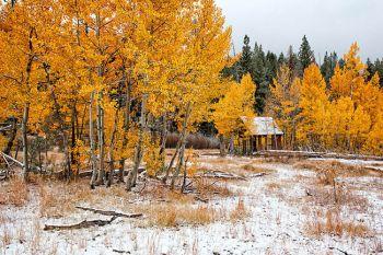Erskine Photography, Snow Shack