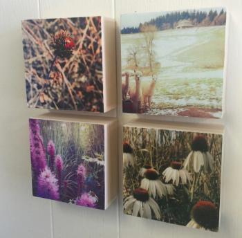 Wildwood Makers Market, Paint & Photo Mixed Media Blocks by Julia Skerry