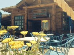 Artemis Lakefront Cafe photo