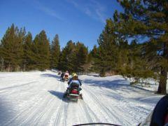 Lake Tahoe Snowmobile Tours photo