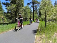 Bike Tahoe photo