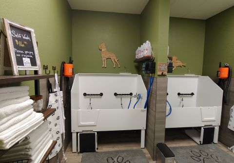 EarthWise Pet, South Lake Tahoe, Easy-To-Use Self Dog Wash!
