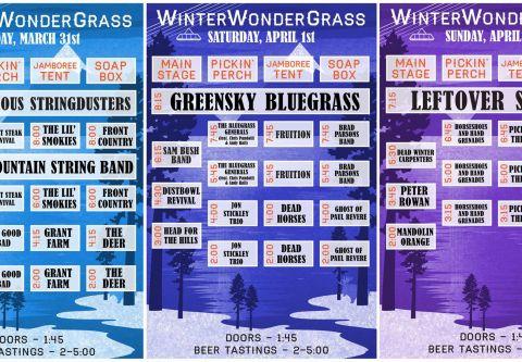 WinterWonderGrass, WinterWonderGrass Single Day Tickets
