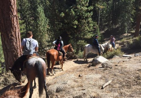 Zephyr Cove Stables, Breakfast & Horseback Trail Rides