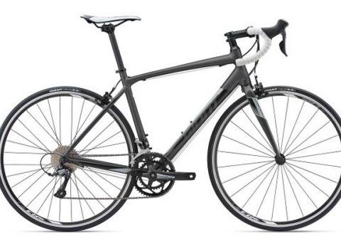 South Shore Bikes, Road Bike Rentals - Giant Contend Alloy