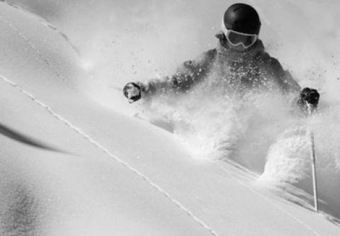 Village Ski Loft, Powder Demo Skis
