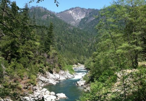 IRIE Rafting, California's Salmon River Raft Trip