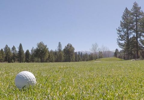 Ponderosa Golf Course, Golf Outings for Kids