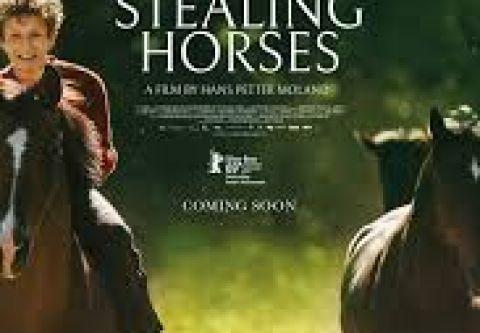 Tahoe Art Haus & Cinema, Out Stealing Horses | Virtual Cinema