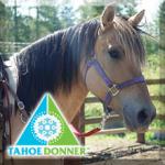 Tahoe Donner Equestrian Center